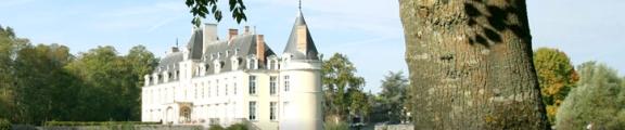 Bannière château