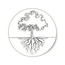 Racines d'arbre