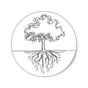 racines arbre monde