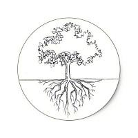 racines darbre