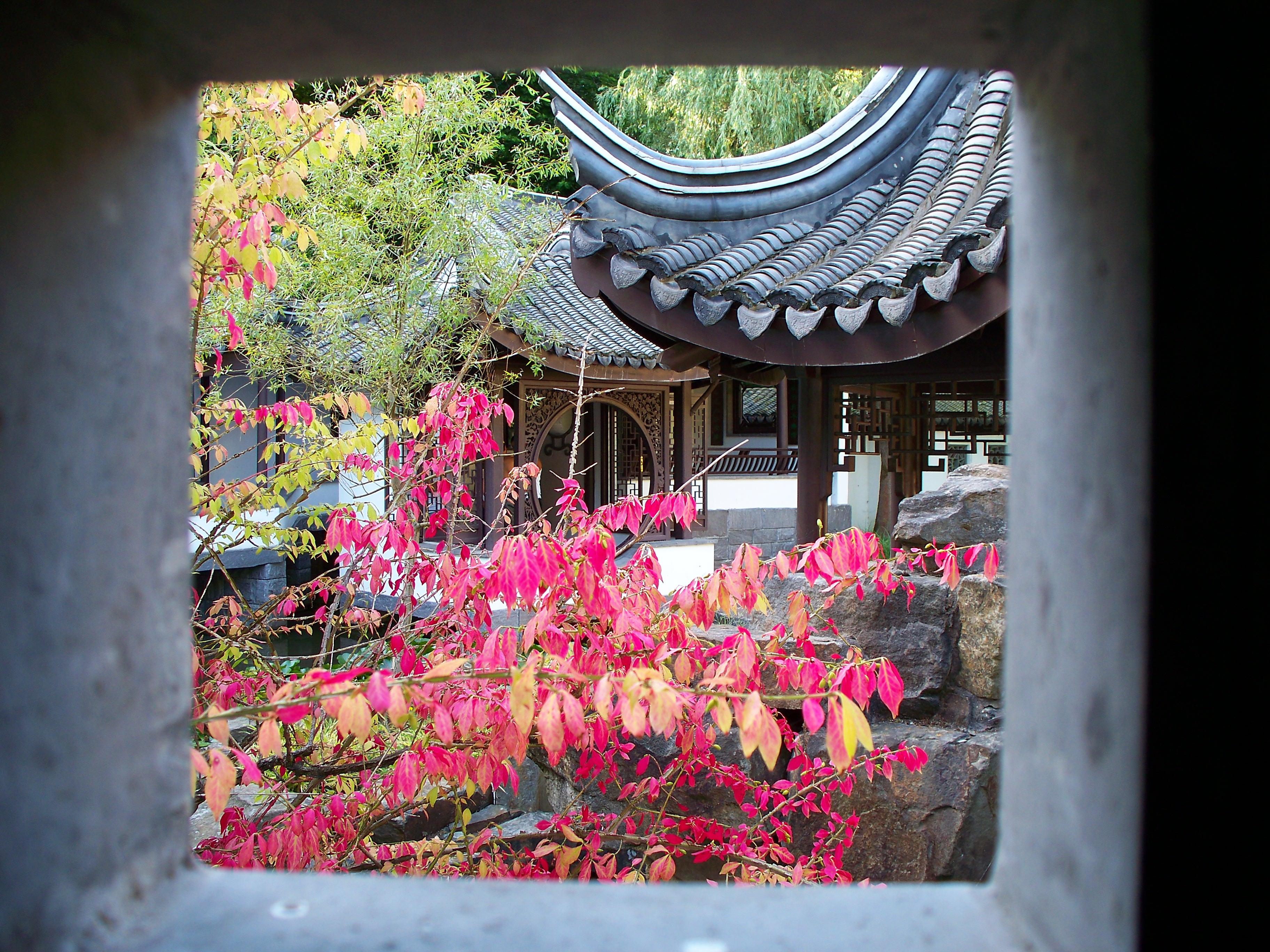 Aujourd hui un chinois m a tenu la porte l 39 identitaire for Jardin chinois